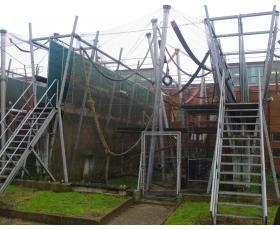 AAP centro šimpanzių kompleksas