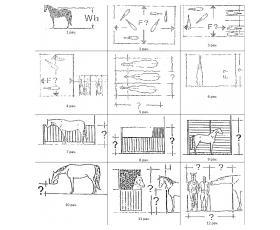 Rekomendacijos arklių gerovei